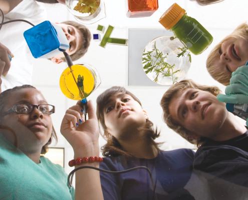 action.labq.tmp-bta.ph-bta._high-school._chemistry._biology._apcatalog2011.001